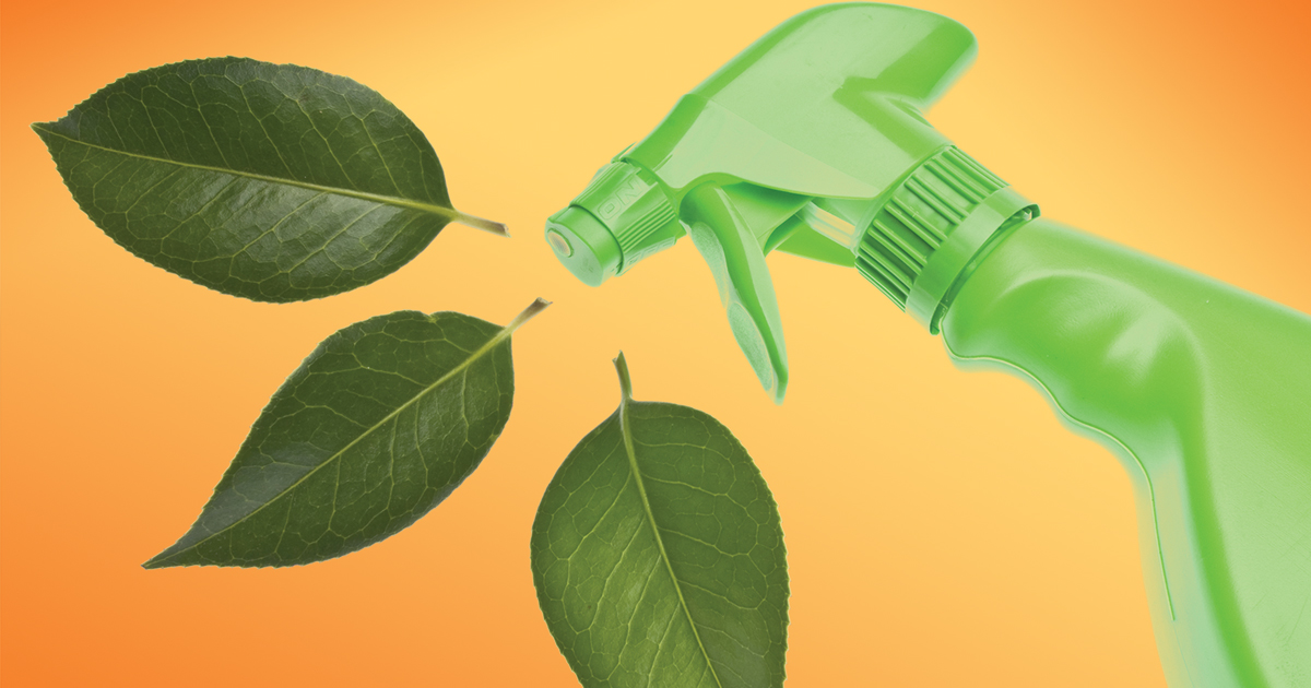 eco friendly commercial cleaning in Indianapolis, IN
